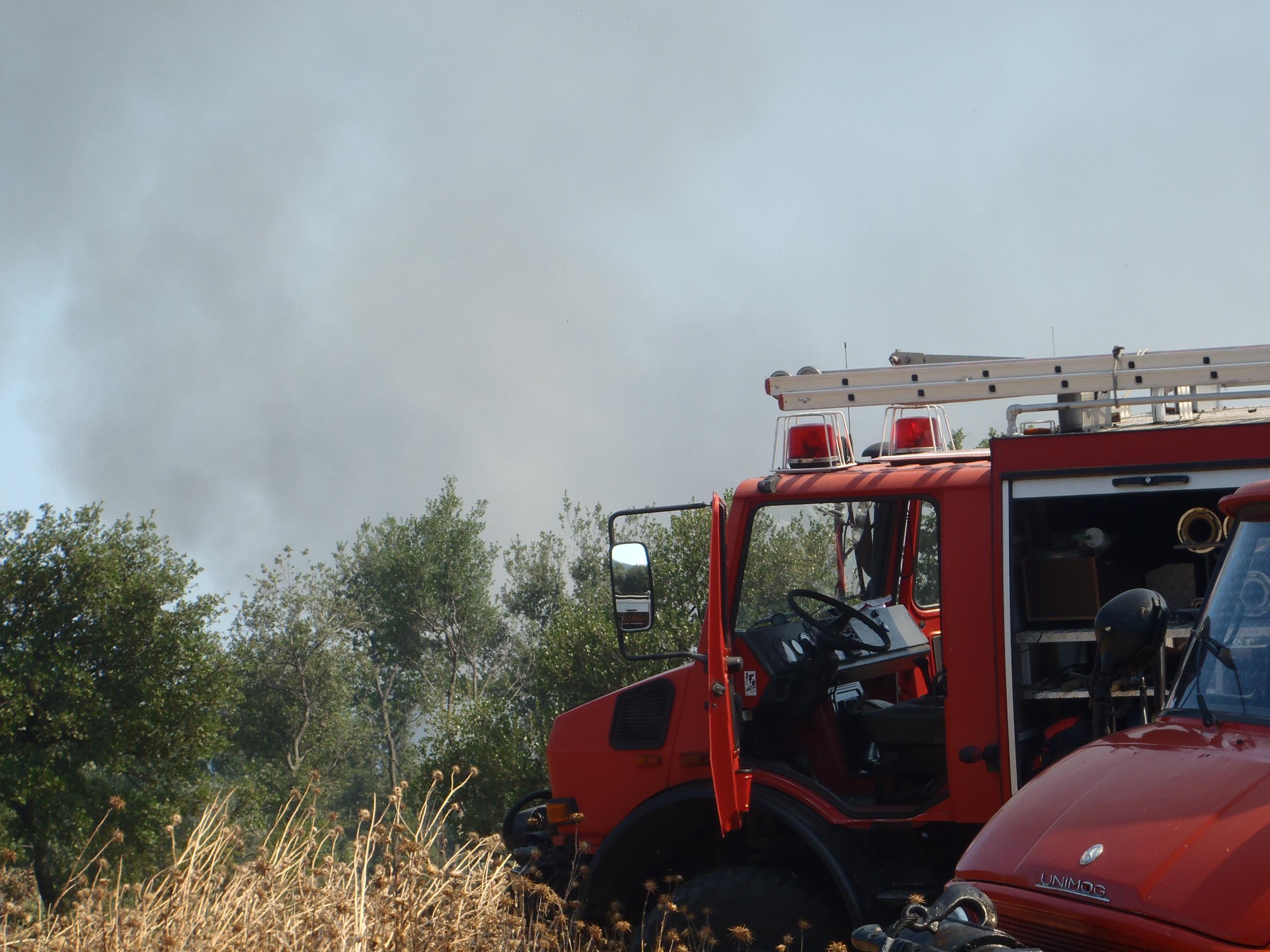 Waldbrand bei Asprovalta/Nordgriechenland